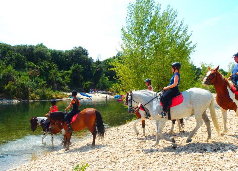 Centre équestre du Pont du Gard – Balade à cheval